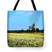 Field Of Queen Anne's Lace  Tote Bag