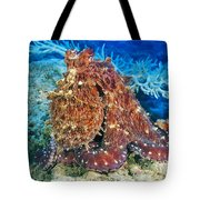 Fiji, Day Octopus Tote Bag