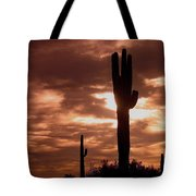 Film Homage Orson Welles Saguaro Cacti The Other Side Of The Wind Carefree Arizona 2004 Tote Bag