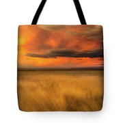 First Encounter 2 Tote Bag