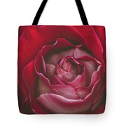 First Rose Bloom  Tote Bag