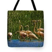 Flamingo Family Tote Bag