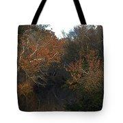 Flint River Tote Bag
