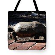 Florida Gopher Tortoise Tote Bag