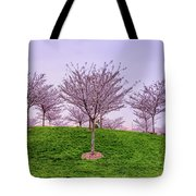 Flowering Young Cherry Trees On A Green Hill In The Park  Tote Bag