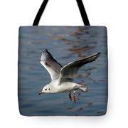 Flying Gull Tote Bag