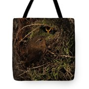 Forest Gnome Tote Bag