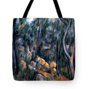 Forest In The Caves Above The Chateau Noir Tote Bag