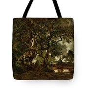Forest Of Fontainebleau Tote Bag