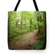 Forest Walking Trail 1 Tote Bag