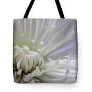 Fragile Beauty Tote Bag