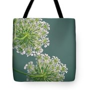 Fragile Dill Umbels On Summer Meadow Tote Bag by Nailia Schwarz