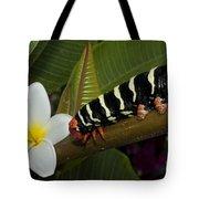 Frangipani Tree And Caterpillar Tote Bag