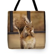 French Fry Eating Squirrel Tote Bag
