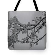 Fresh Snow On Magnolia Tree Tote Bag