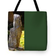 Crackers And Cheese For Two? Tote Bag