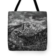 From Bog Spring Trail Tote Bag