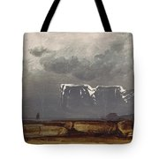 From North Cape Tote Bag