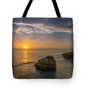 From Surf To Sky Tote Bag