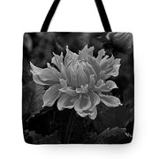 From Your Window Tote Bag