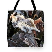 Frost-lined Tote Bag