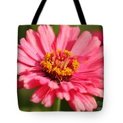 Fuchsia Pink Zinnia From The Whirlygig Mix Tote Bag
