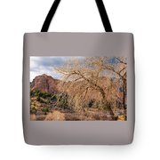 Garden Of The Gods Entrance Tote Bag