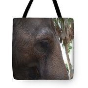 Gentle Giant Tote Bag
