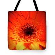 Gerbera Daisy Detail Tote Bag