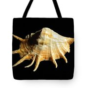 Giant Spider Conch Seashell Lambis Truncata Tote Bag