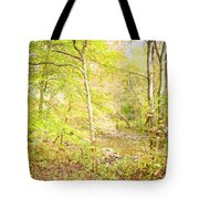 Glimpse Of A Stream In Autumn Tote Bag