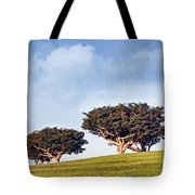 Glorious Morning Pnt Tote Bag