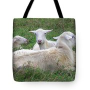 Goat Family Tote Bag