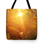 Golden Days Of Autumn Tote Bag