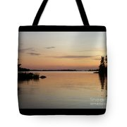 Golden Shores Tote Bag