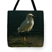 Golden Slippers Tote Bag