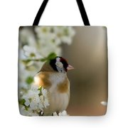 Goldfinch Spring Blossom Tote Bag
