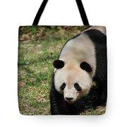 Gorgeous Black And White Giant Panda Bear Walking Tote Bag