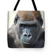Gorilla 1 Tote Bag