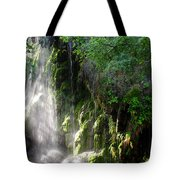 Gormon Falls Colorado Bend State Park.  Tote Bag