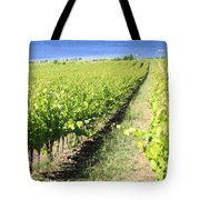 Grapevines In A Vineyard Tote Bag