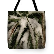 Grass In Snow 2 Tote Bag