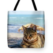 Gray Cat On The Background Of The Sea 1 Tote Bag