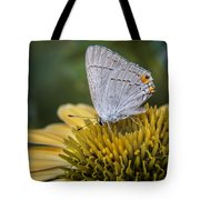 Gray Hairstreak Butterfly Tote Bag