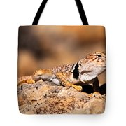 Great Basin Collared Lizard Tote Bag