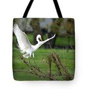 Great Egret Prepared For Landing Tote Bag