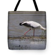 Great Rift Birds Tote Bag