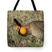 Greater Prairie Chicken Male 9 Tote Bag