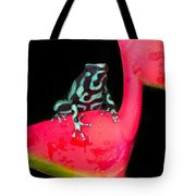 Green And Black Poison Dart Frog Tote Bag