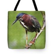 Green Heron At Gilbert Riparian Preserve Tote Bag